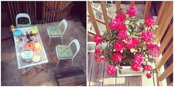 a vida em fotos + a amizade eh como uma flor