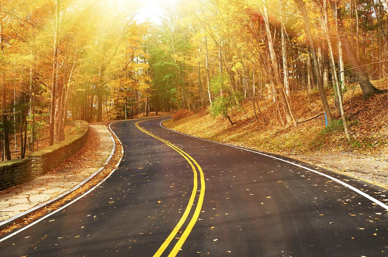 estrada errada da vida - Ambiente Vistoriado